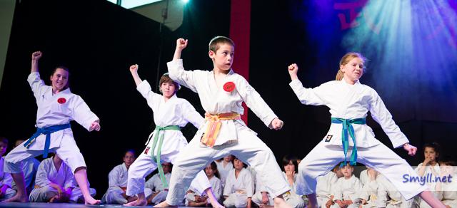6eme nuit des arts martiaux à Lavaur